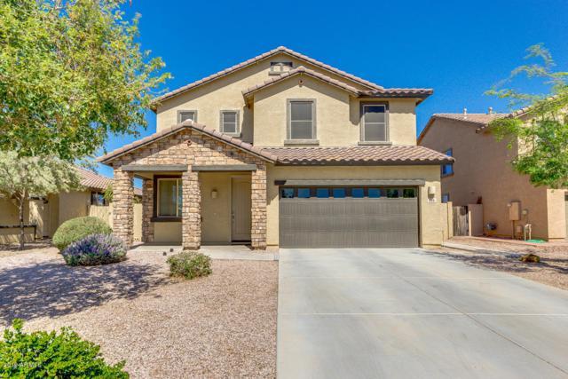 866 E Euclid Avenue, Gilbert, AZ 85297 (MLS #5898665) :: REMAX Professionals