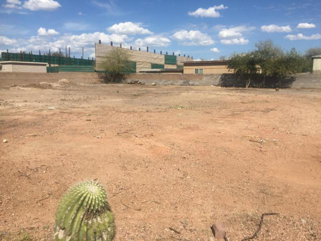 21607 N 36TH Circle, Glendale, AZ 85308 (MLS #5898681) :: REMAX Professionals
