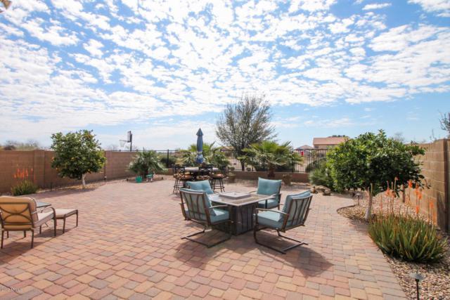 2815 E Denim Trail, San Tan Valley, AZ 85143 (MLS #5898697) :: Keller Williams Realty Phoenix