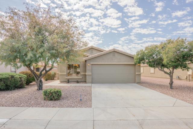 16019 W Winchcomb Drive, Surprise, AZ 85379 (MLS #5898726) :: REMAX Professionals