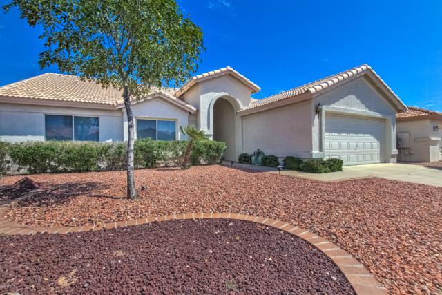 24403 S Starcrest Drive, Sun Lakes, AZ 85248 (MLS #5898736) :: REMAX Professionals