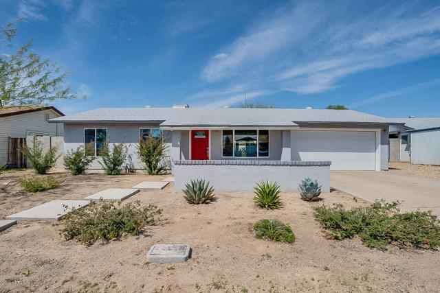 4820 W Villa Rita Drive, Glendale, AZ 85308 (MLS #5898754) :: REMAX Professionals