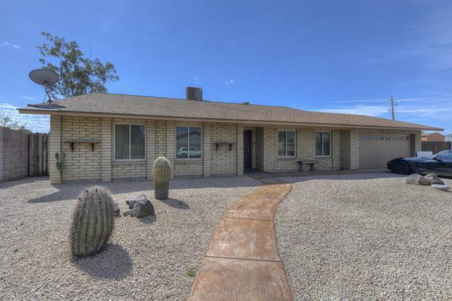 4401 E Phelps Road, Phoenix, AZ 85032 (MLS #5898776) :: Yost Realty Group at RE/MAX Casa Grande