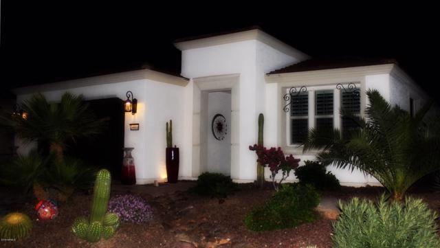 29911 N 129TH Avenue, Peoria, AZ 85383 (MLS #5898785) :: REMAX Professionals