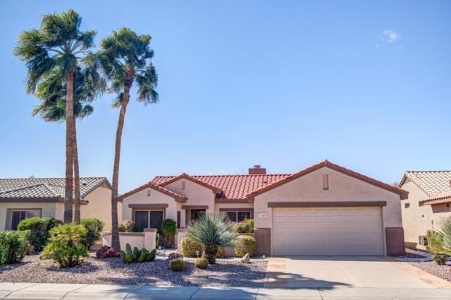 17660 N Estrella Vista Drive, Surprise, AZ 85374 (MLS #5898791) :: REMAX Professionals
