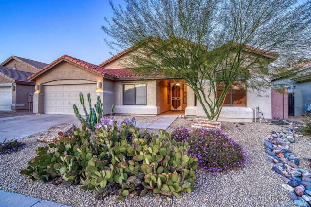4506 E Jaeger Road, Phoenix, AZ 85050 (MLS #5898793) :: RE/MAX Excalibur