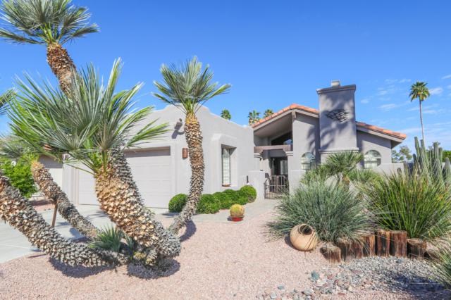 25654 S Brentwood Drive, Sun Lakes, AZ 85248 (MLS #5898795) :: REMAX Professionals