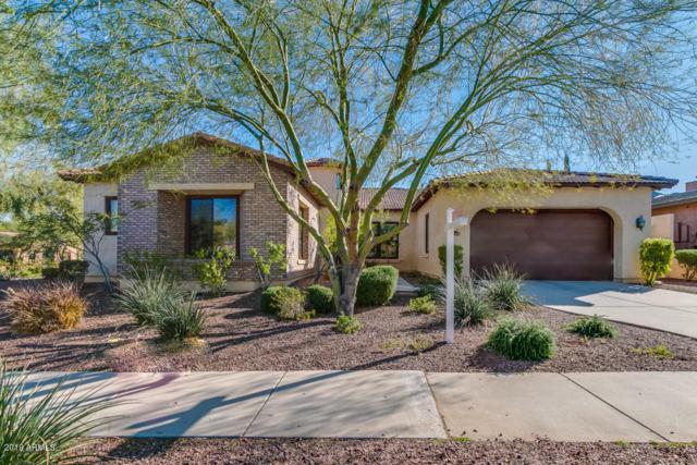 21345 W Cholla Trail, Buckeye, AZ 85396 (MLS #5898799) :: The Daniel Montez Real Estate Group