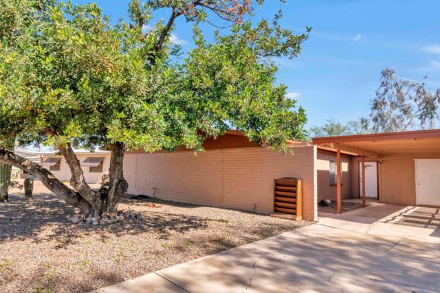 2322 E Birchwood Avenue, Mesa, AZ 85204 (MLS #5898812) :: Yost Realty Group at RE/MAX Casa Grande