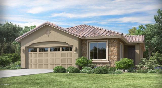 12367 W Palmaire Avenue, Glendale, AZ 85307 (MLS #5898840) :: Santizo Realty Group