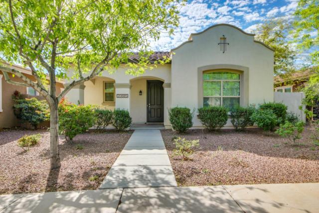 20685 W Hamilton Street, Buckeye, AZ 85396 (MLS #5898851) :: CC & Co. Real Estate Team