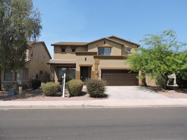 3578 E Meadowview Drive, Gilbert, AZ 85298 (MLS #5898852) :: Team Wilson Real Estate