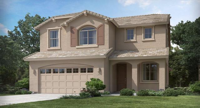 12360 W Palmaire Avenue, Glendale, AZ 85307 (MLS #5898857) :: Santizo Realty Group