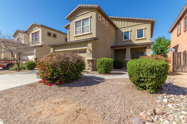 17566 W Bridger Street, Surprise, AZ 85388 (MLS #5898875) :: Home Solutions Team
