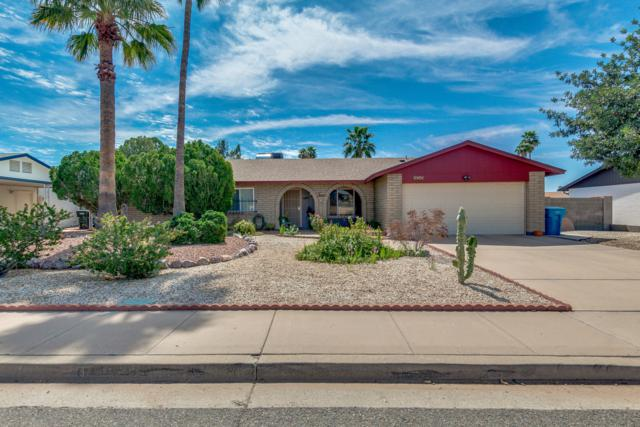 4715 W Sweetwater Avenue, Glendale, AZ 85304 (MLS #5898888) :: Yost Realty Group at RE/MAX Casa Grande