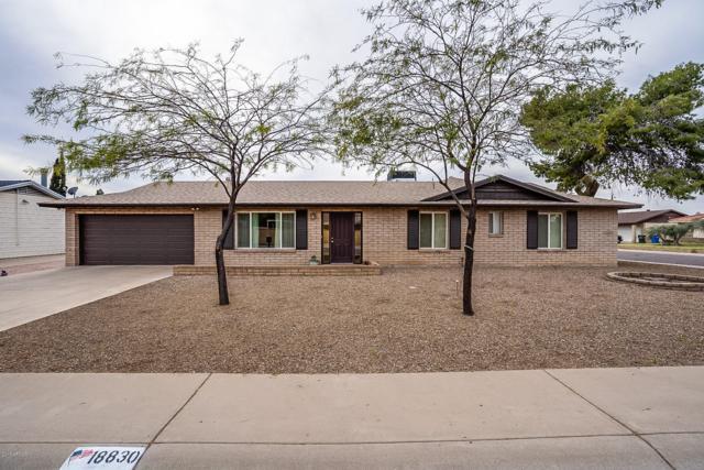18830 N 22ND Lane, Phoenix, AZ 85027 (MLS #5898891) :: Yost Realty Group at RE/MAX Casa Grande