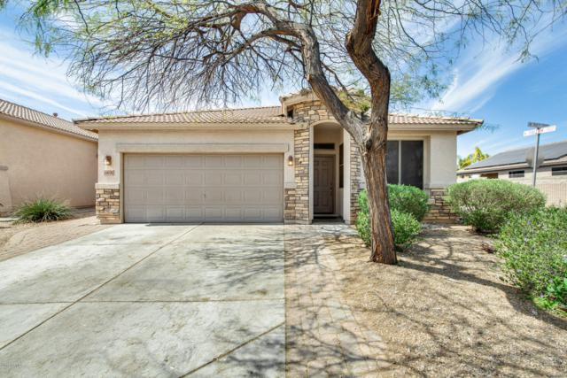 18242 N 90TH Lane, Peoria, AZ 85382 (MLS #5898893) :: Occasio Realty