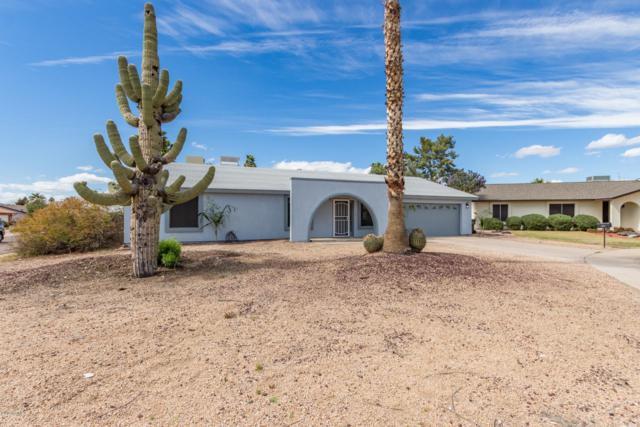 11812 N 43RD Drive, Glendale, AZ 85304 (MLS #5898907) :: The Carin Nguyen Team