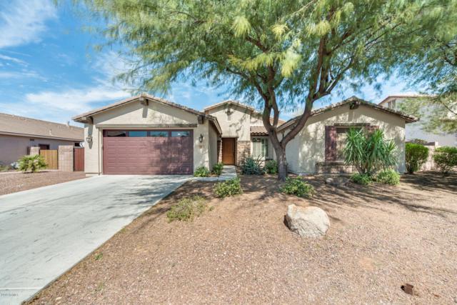 54 W Blue Ridge Way, Chandler, AZ 85248 (MLS #5898914) :: The Property Partners at eXp Realty