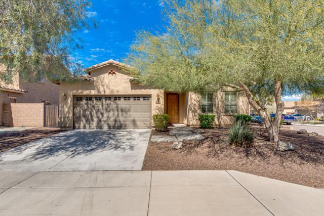 2686 W Mila Way, Queen Creek, AZ 85142 (MLS #5898919) :: Revelation Real Estate