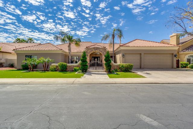 1321 E Treasure Cove Drive, Gilbert, AZ 85234 (MLS #5898986) :: Yost Realty Group at RE/MAX Casa Grande