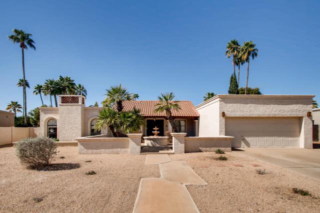 8320 E San Rosendo Drive, Scottsdale, AZ 85258 (MLS #5899004) :: The Carin Nguyen Team