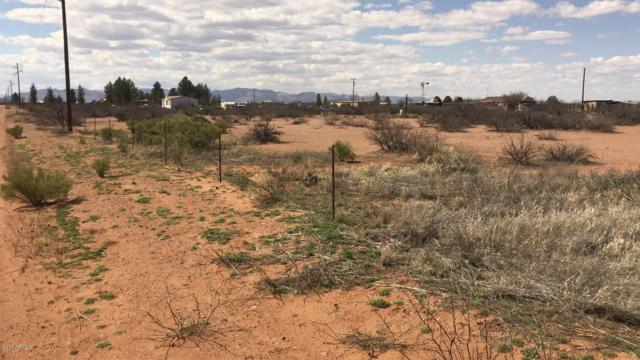 XXXX W Triple G Lane, Douglas, AZ 85607 (MLS #5899026) :: Phoenix Property Group