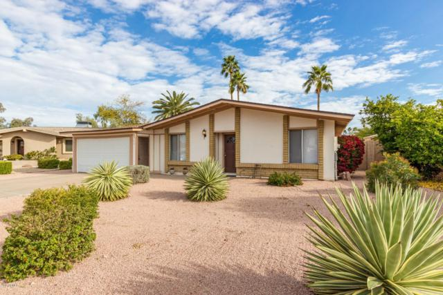 2750 W Junquillo Circle, Mesa, AZ 85202 (MLS #5899054) :: Team Wilson Real Estate