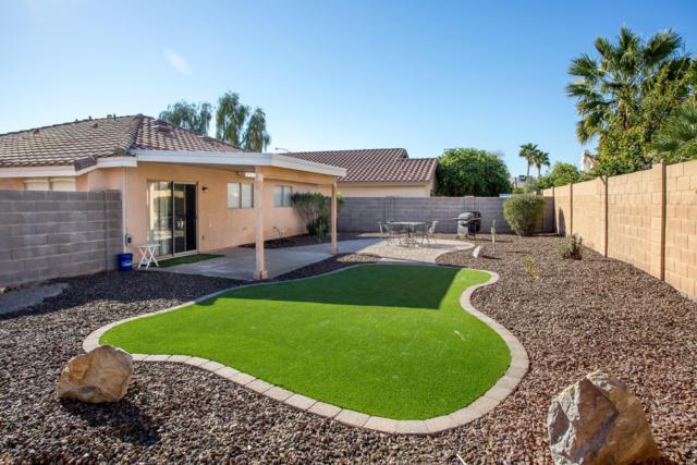 932 S Somerset Drive, Mesa, AZ 85206 (MLS #5899071) :: The Property Partners at eXp Realty