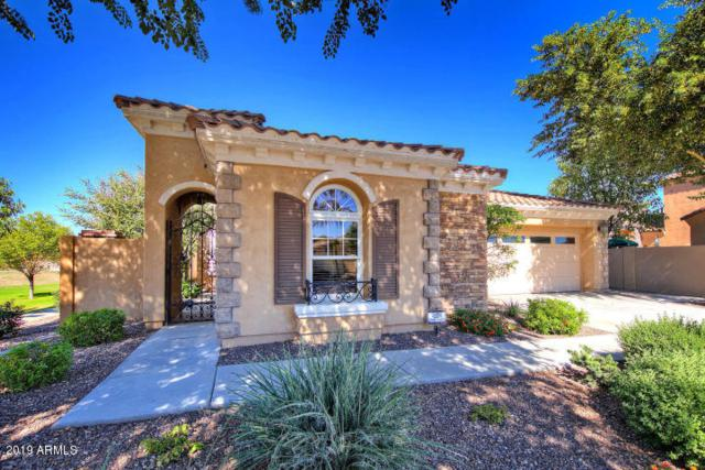2382 E Dogwood Drive, Chandler, AZ 85286 (MLS #5899088) :: The W Group