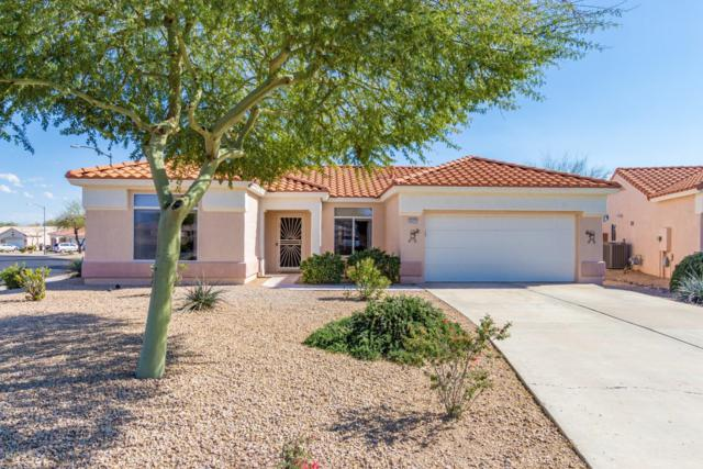 13717 W Utica Drive, Sun City West, AZ 85375 (MLS #5899150) :: Yost Realty Group at RE/MAX Casa Grande