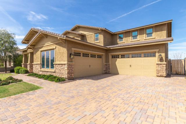 20094 E Camacho Road, Queen Creek, AZ 85142 (MLS #5899161) :: Riddle Realty