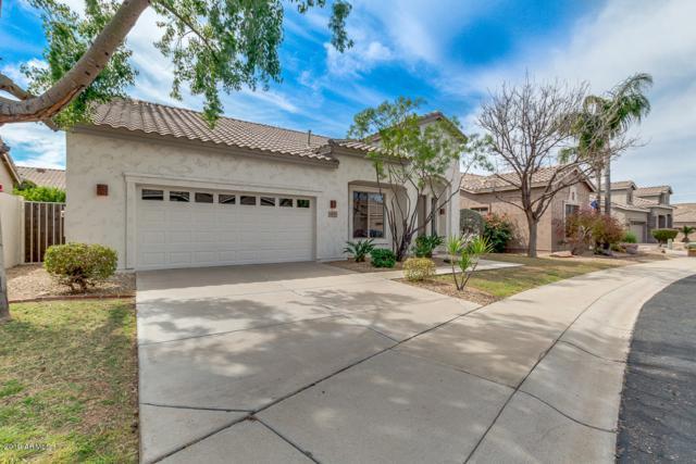 4817 E Bluefield Avenue, Scottsdale, AZ 85254 (MLS #5899229) :: Yost Realty Group at RE/MAX Casa Grande