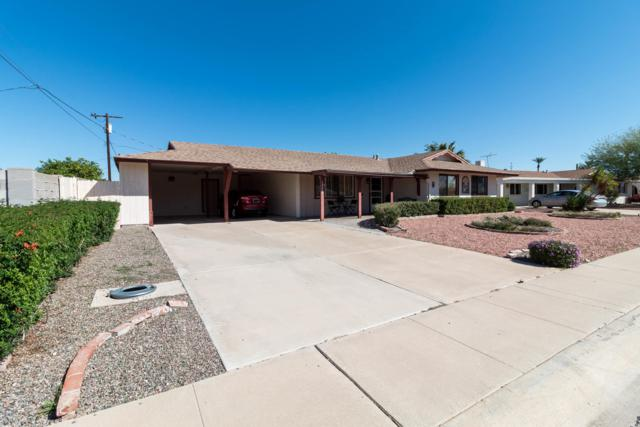 12253 N Hacienda Drive, Sun City, AZ 85351 (MLS #5899244) :: Occasio Realty