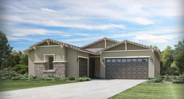 9214 W Meadowbrook Avenue, Phoenix, AZ 85037 (MLS #5899266) :: neXGen Real Estate
