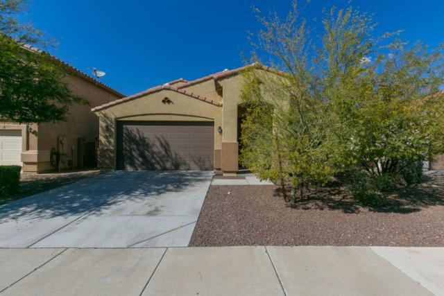 12032 W Carlota Lane, Sun City, AZ 85373 (MLS #5899269) :: RE/MAX Excalibur