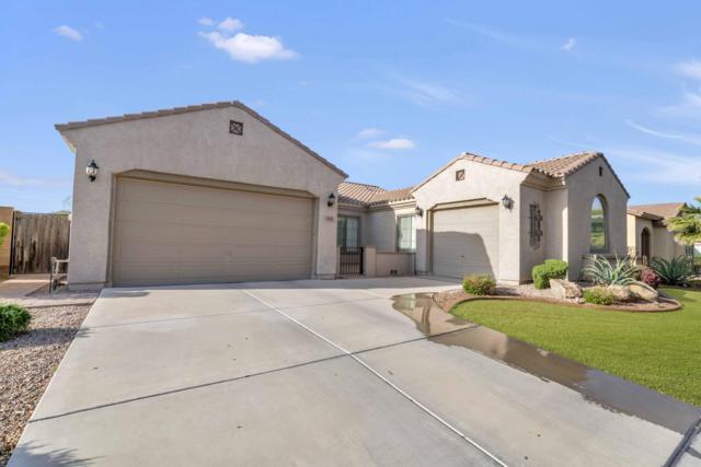 3149 E Tonto Drive, Gilbert, AZ 85298 (MLS #5899283) :: Yost Realty Group at RE/MAX Casa Grande