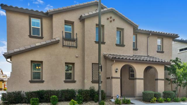 1181 N 163RD Lane, Goodyear, AZ 85338 (MLS #5899312) :: Team Wilson Real Estate
