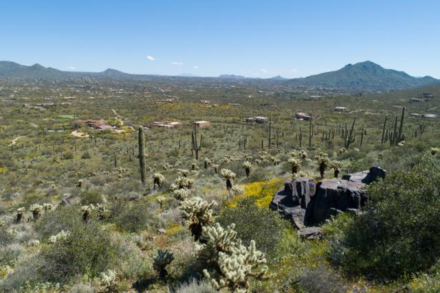 401xx N 50th Street, Cave Creek, AZ 85331 (MLS #5899313) :: Lux Home Group at  Keller Williams Realty Phoenix