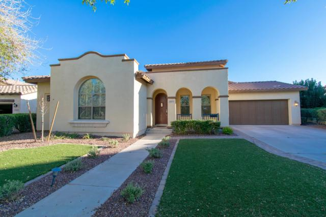 20473 W Thayer Street, Buckeye, AZ 85396 (MLS #5899329) :: The Results Group