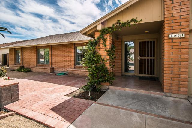 1061 E Hope Street, Mesa, AZ 85203 (MLS #5899359) :: Yost Realty Group at RE/MAX Casa Grande