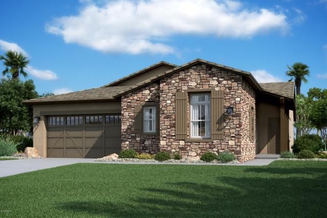 9123 W Minnezona Avenue, Phoenix, AZ 85037 (MLS #5899364) :: neXGen Real Estate