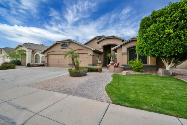 1122 E Constitution Drive, Gilbert, AZ 85296 (MLS #5899392) :: Yost Realty Group at RE/MAX Casa Grande