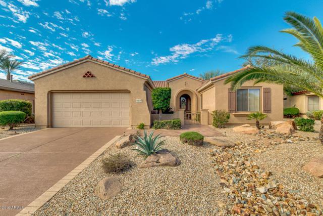 16133 W Desert Cove Way, Surprise, AZ 85374 (MLS #5899396) :: Santizo Realty Group