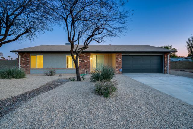 4331 E Acoma Drive, Phoenix, AZ 85032 (MLS #5899407) :: Occasio Realty