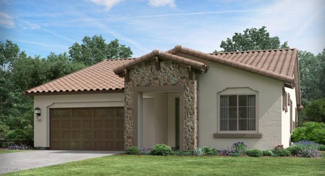 20476 W Hazelwood Avenue, Buckeye, AZ 85396 (MLS #5899418) :: The Results Group