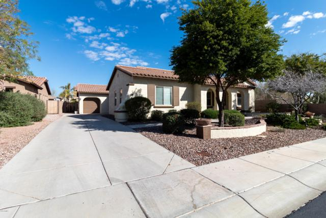 12416 W Dove Wing Way, Peoria, AZ 85383 (MLS #5899419) :: Kortright Group - West USA Realty