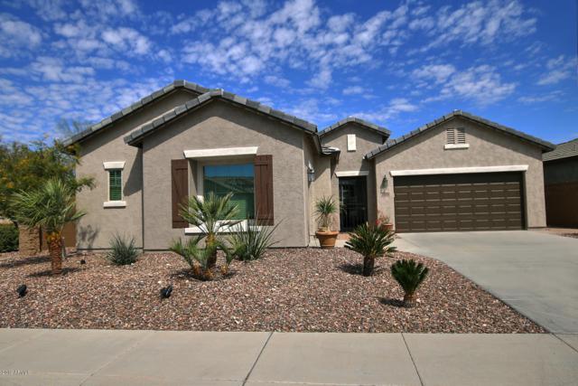 6752 W Desert Blossom Way, Florence, AZ 85132 (MLS #5899427) :: CC & Co. Real Estate Team