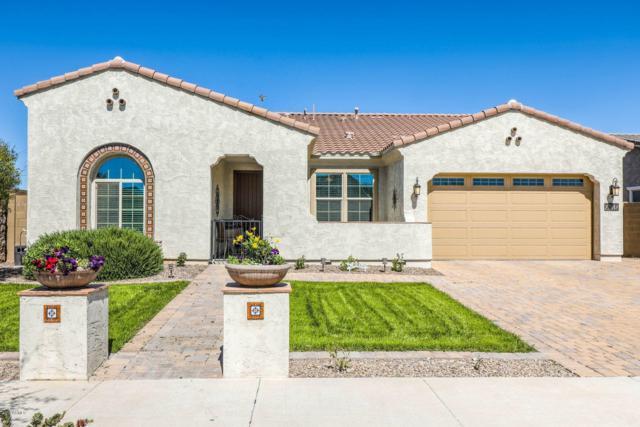 22042 E Estrella Road, Queen Creek, AZ 85142 (MLS #5899428) :: Yost Realty Group at RE/MAX Casa Grande