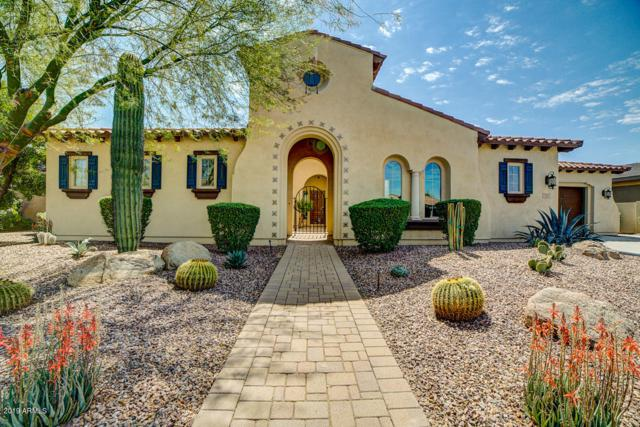 3305 E Birchwood Place, Chandler, AZ 85249 (MLS #5899467) :: Lux Home Group at  Keller Williams Realty Phoenix